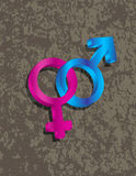Male Female Gender 3D Symbols Interlocking Illustr Stock Image
