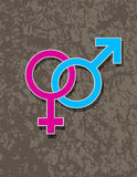 Male and Female Gender Symbol Interlocking Royalty Free Stock Photo
