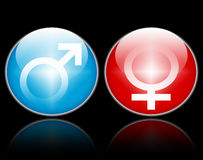Male female gender symbols. Two illustrated gender buttons or icons with a blue male symbol and a red female symbol Stock Photos