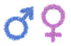 Male female gender symbols Royalty Free Stock Photography