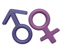 Male and Female gender Symbols 3d Royalty Free Stock Image