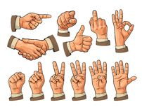 Male and female Hand sign. Fist, Like, pointing, ok, peace,. Male hand sign. Fist, like, handshake, ok, peace, pointing finger at viewer from front. Set of vector illustration