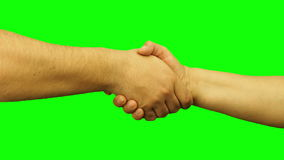 Male and female hands handshaking isolated stock footage