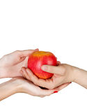 Male and female hands holding an apple Stock Images