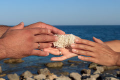 Male and female hands holding sea sponge. As a sign of love and loyalty Stock Photo