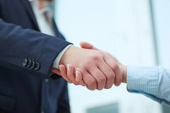 Man in suit shake hand as hello in office closeup. Male and female handshake in office. Serious business and partnership concept. Partners made deal, sealed Stock Photo
