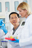 Male And Female Scientists Working In Laboratory Royalty Free Stock Images