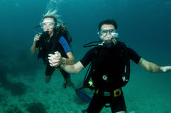 Male and female scuba dive together Stock Images