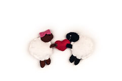 Male and female sheep in love. Royalty Free Stock Images