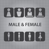 Male and Female Signs Vector Stock Photography
