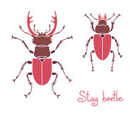 Male and female stag beetle, Lucanus cervus, Stag Stock Images