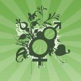 Male female symbols. Green with sunburst Stock Photo