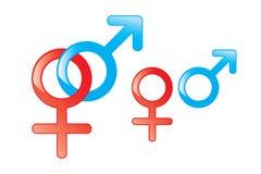 Male and Female Symbols. On white background stock illustration