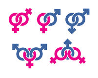 Male and female symbols combination. Authors illustration in vector Royalty Free Stock Image