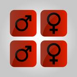 Male and female symbols on a red background. Vector illustration stock illustration