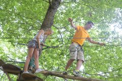 Male and female on tree top adventure stock photos