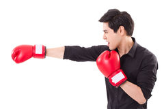 Male fighter, man boxer punching Stock Image