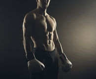 Boxer man Royalty Free Stock Images