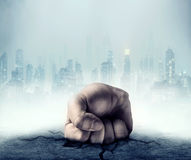Male fist Royalty Free Stock Photography