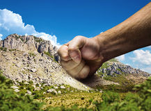 Male fist Stock Image