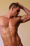 Male fitness model Stock Images