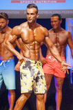 Male fitness model shows his physique in swimsuit on stage. MAASTRICHT, THE NETHERLANDS - OCTOBER 25, 2015: Male physique model shows his best side pose at Royalty Free Stock Photos