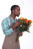 Male florist Royalty Free Stock Photo
