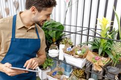 Male florist with digital tablet Stock Image