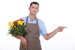 Male florist Royalty Free Stock Photos