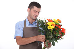 Male florist Stock Photography