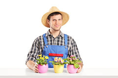 Male florist sitting on a table with many flower pots Royalty Free Stock Photography