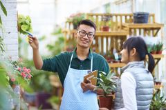Male Florist Talking to his Customer in the shop. Young Asian Male Florist Have Conversation with his Customer in the Shop Stock Photo