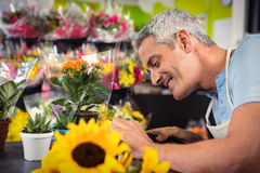 Male florist trimming stems of flowers at flower shop Stock Photography