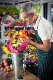 Male florist watering flowers with watering can Stock Image
