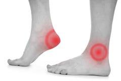 Male foot, heel, feet royalty free stock image