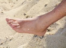Male foot on sand beach. Walking on the beaches in Elba island. Detail Stock Image
