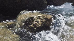 Male foot stepping on stone in flowing river. Male foot in shoe walking along rocky mountain river in journey. Travel. Trekking and tourism stock video footage