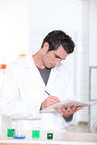 Male forskare i laboratorium Royaltyfri Bild