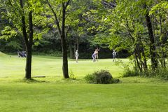 Male foursome at golf hole in pretty rural oldest north-american golf course stock image