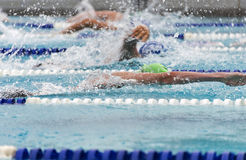 Male freestyle swimmers in a close race. Male freestyle swimmers compete in a competitive race during an outdoor summer swim meet Stock Photo