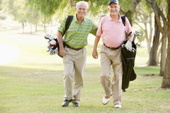Male Friends Enjoying A Game Of Golf Royalty Free Stock Image