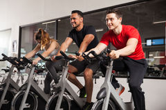 Male friends enjoying spinning in a gym Stock Image