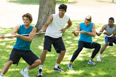 Male friends playing tug of war Royalty Free Stock Photos