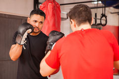 Male friends practicing boxing at a gym. Two young men wearing boxing gloves and doing some sparring at the gym Stock Image