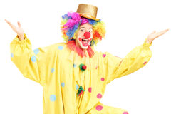 Male funny circus clown posing Royalty Free Stock Images