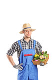 Male gardener holding a basket with flowers Stock Photography