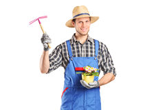 Male gardener holding flower plant and a mattock Royalty Free Stock Photography