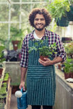 Male gardener holding potted plant and watering can. Portrait of happy male gardener holding potted plant and watering can at greenhouse stock image