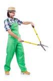 Male gardener isolated on white Royalty Free Stock Image
