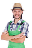 Male gardener isolated on white Stock Photos